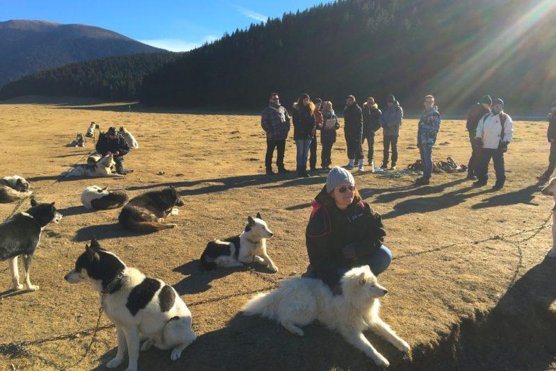 Seminaire-pyrenees-La Mongie-team-building-activite-chiens-de-traineaux-cani-randon-pique-nique-randonnee-pic-du-midi-emotion-tourmalet-aperitif-agence-evenementielle-erronda-pays-basque-voyage-5