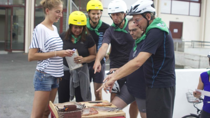 seminaire team building biarritz saint jean de luz corsaire activité-nautique-pirogue-hawaienne-velo-electrique chasse au tresor rallye-corsaire-enigmes-paintball-socoa-egiategia-degustation-vin-agence-evenementielle erronda pays basque