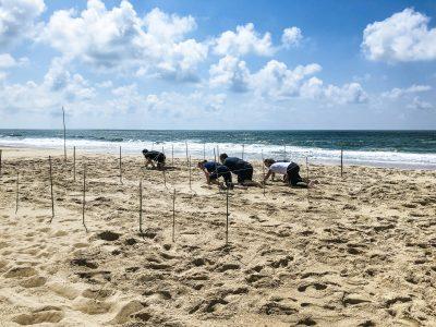 agence événementielle réceptive voyage pays basque erronda séminaire team building event saint jean de luz seminaire landes hossegor seignosse plage sauvage